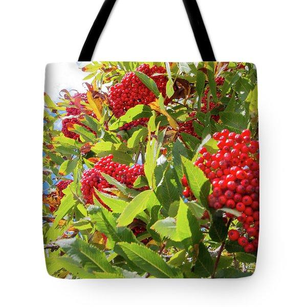 Red Berries, Blue Skies Tote Bag