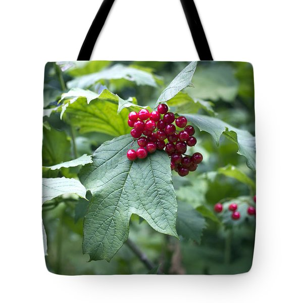 Tote Bag featuring the photograph Red Berries by Helga Novelli