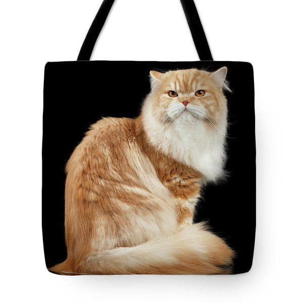 Red Big Adult Persian Cat Angry Sits And Turned Back On Black  Tote Bag