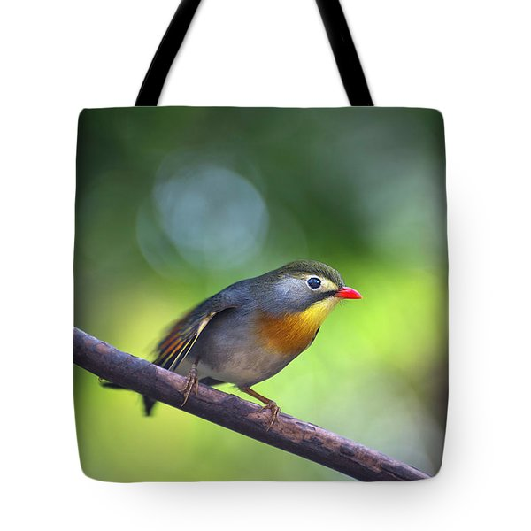 Red Billed Leiothrix Tote Bag