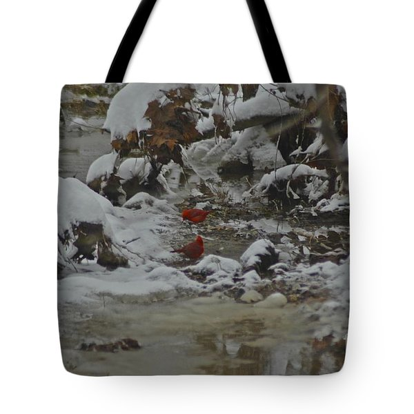 Red Bird Red Bird Tote Bag