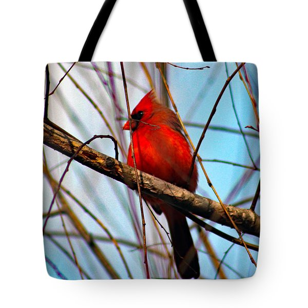 Red Bird Sitting Patiently Tote Bag