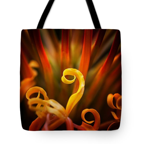 Tote Bag featuring the photograph Red Blazing Flower by Ken Barrett