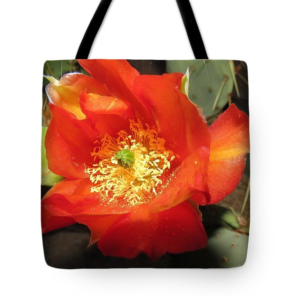 Red Bloom 1 - Prickly Pear Cactus Tote Bag