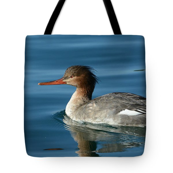 Red Breasted Beauty Tote Bag