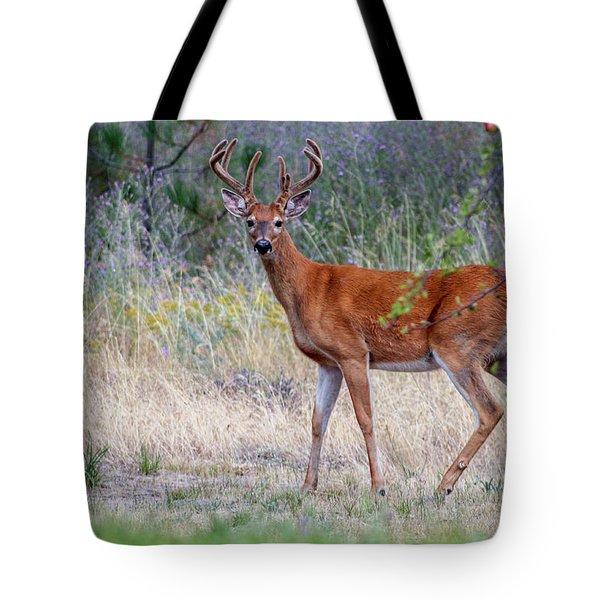 Red Bucks 1 Tote Bag