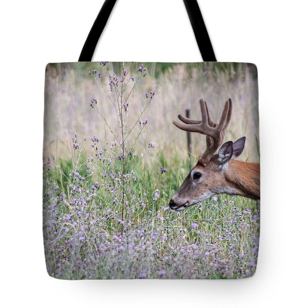 Tote Bag featuring the photograph Red Bucks 4 by Antonio Romero
