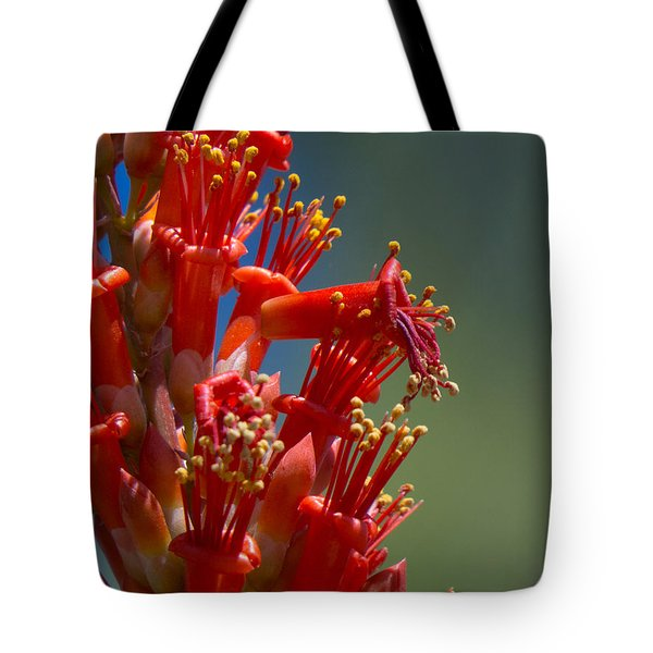 Red Cactus Flower 1 Tote Bag
