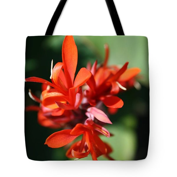 Red Canna Flower Tote Bag by John W Smith III