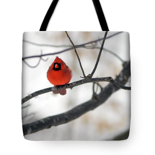 Tote Bag featuring the photograph Red Cardinal In Snow by Marie Hicks