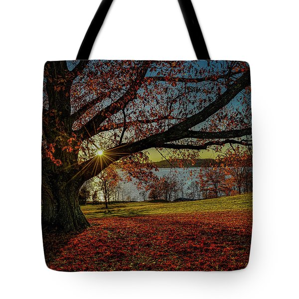 Red Carpet Tote Bag by Jeffrey Friedkin
