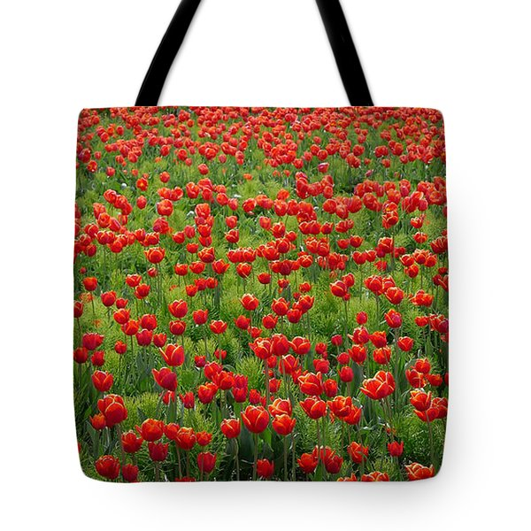 Tote Bag featuring the photograph Red Carpet by Tom Vaughan