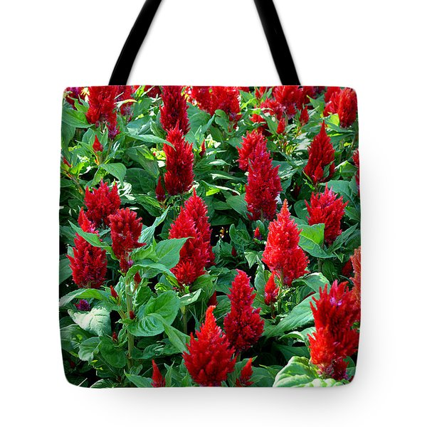 Tote Bag featuring the photograph Red Celosia Garden by Glenn McCarthy Art and Photography