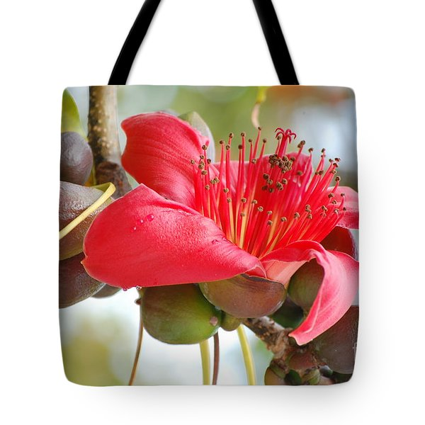 Red Cotton Tree 2 Tote Bag