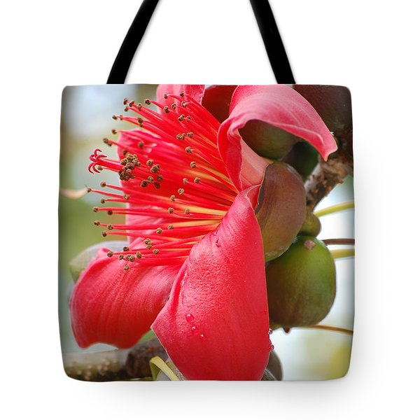 Red Cotton Tree Tote Bag