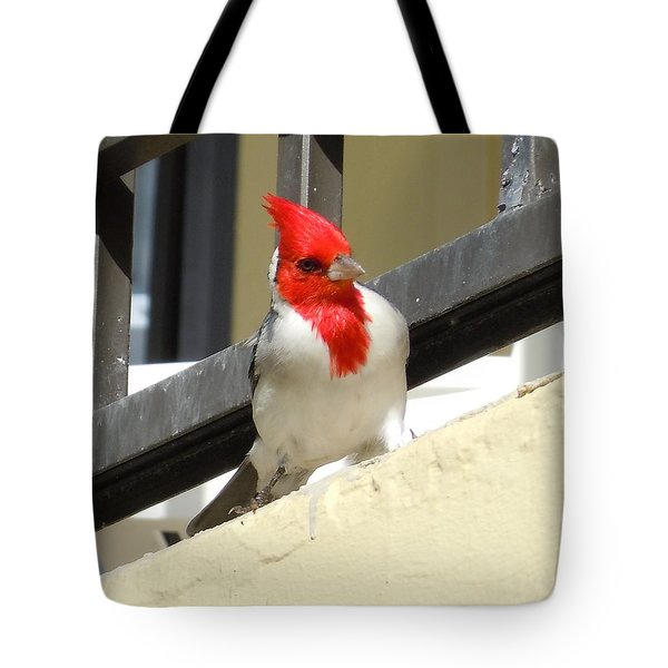 Red-crested Cardinal Posing On The Balcony Tote Bag