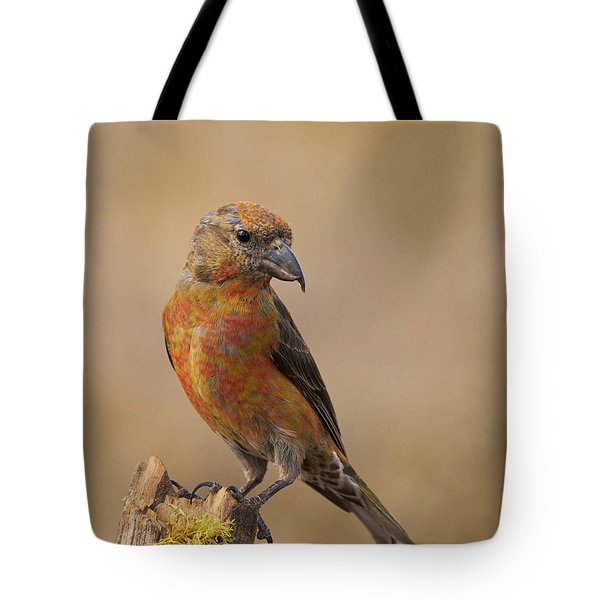 Red Crossbill Tote Bag by Doug Herr