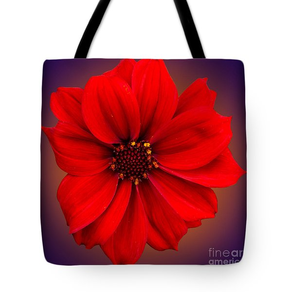 Tote Bag featuring the photograph Red Dahlia-bishop-of-llandaff by Brian Roscorla