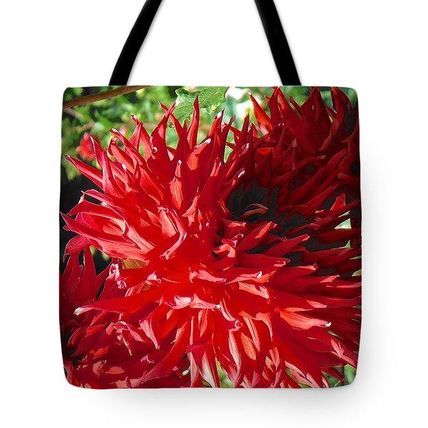 Red Dahlia Pizazz  Tote Bag