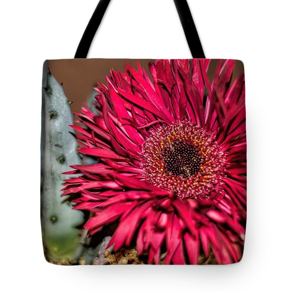 Tote Bag featuring the photograph Red Daisy And The Cactus by Diana Mary Sharpton