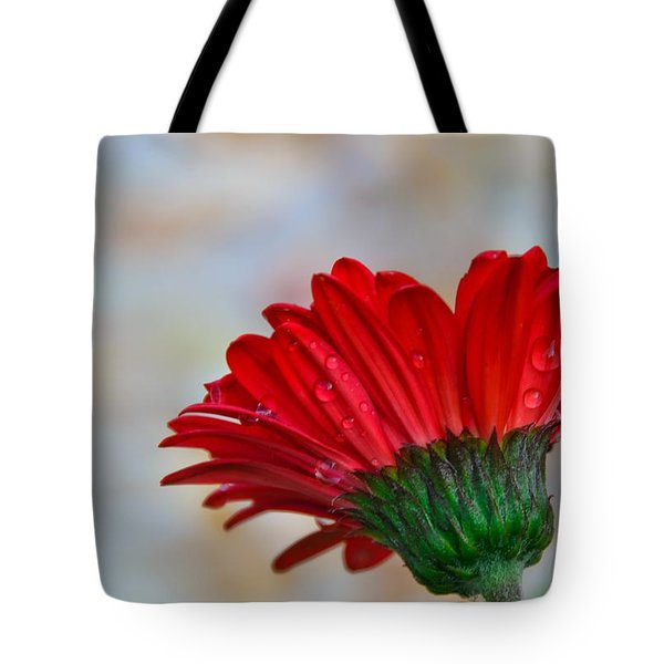 Red Daisy  Tote Bag by John Harding