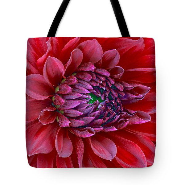 Red Dalia Up Close Tote Bag by James Steele