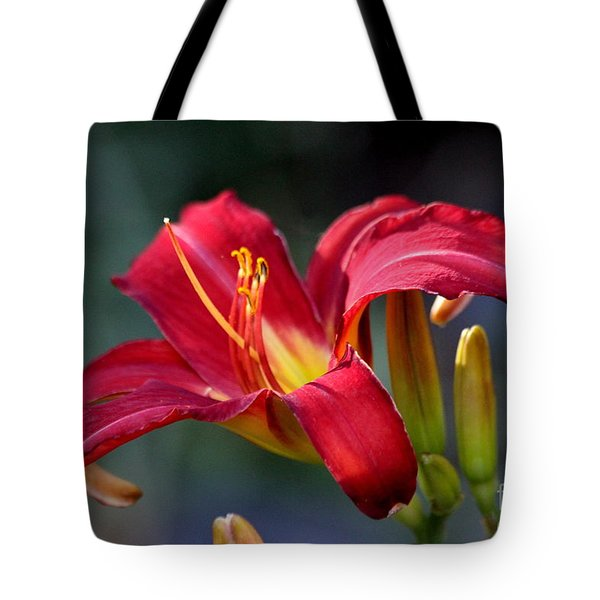 Tote Bag featuring the photograph Red Day Lily  by Irina Hays