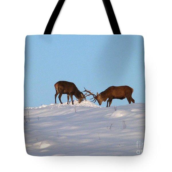 Red Deer Stags - Winter Sparring Tote Bag