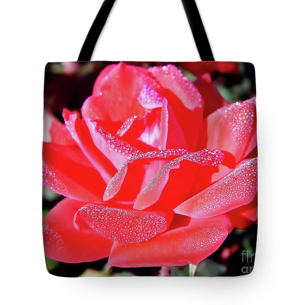 Red - Dew Covered  - Rose Tote Bag