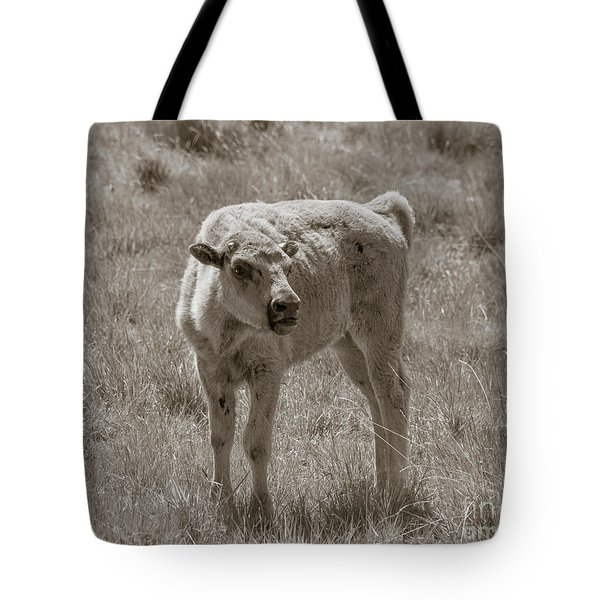 Tote Bag featuring the photograph Red Dog Buffalo Calf by Rebecca Margraf