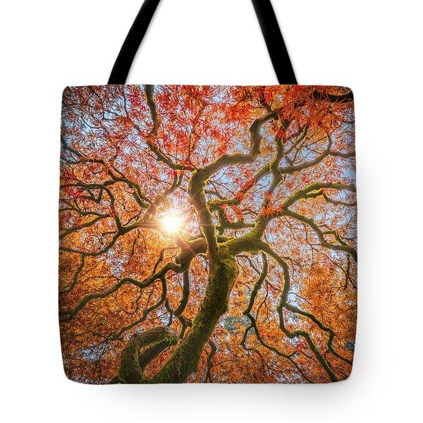 Tote Bag featuring the photograph Red Dragon Japanese Maple In Autumn Colors by William Lee