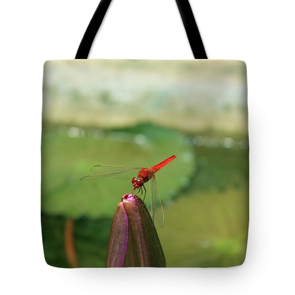 Red Dragonfly At Lady Buddha Tote Bag