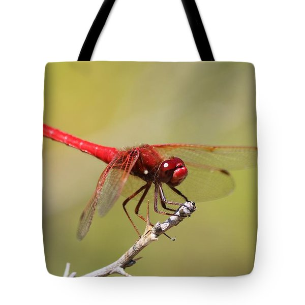 Red Dragonfly Tote Bag by Christy Pooschke
