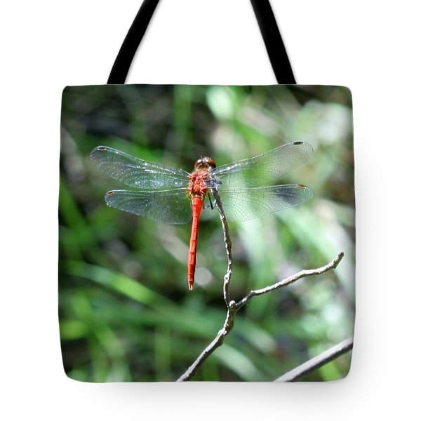 Tote Bag featuring the photograph Red Dragonfly by Karen Silvestri