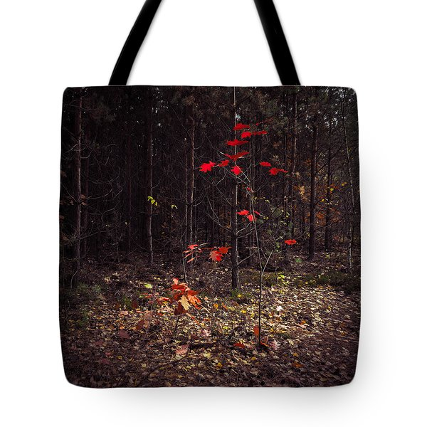 Red Drops Tote Bag by Dmytro Korol