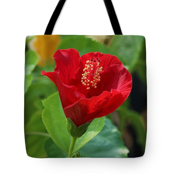 Tote Bag featuring the photograph Red Elegance by Sheila Brown