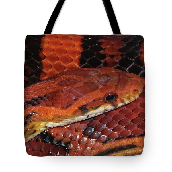 Red Eyed Snake Tote Bag by Patricia McNaught Foster