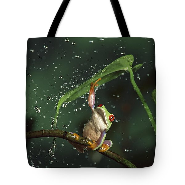 Red-eyed Tree Frog In The Rain Tote Bag by Michael Durham