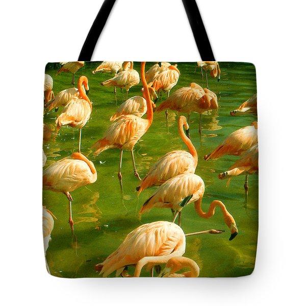 Red Florida Flamingos In Green Water Tote Bag