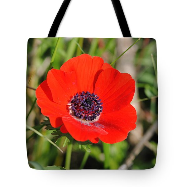 Red Anemone Coronaria 4 Tote Bag