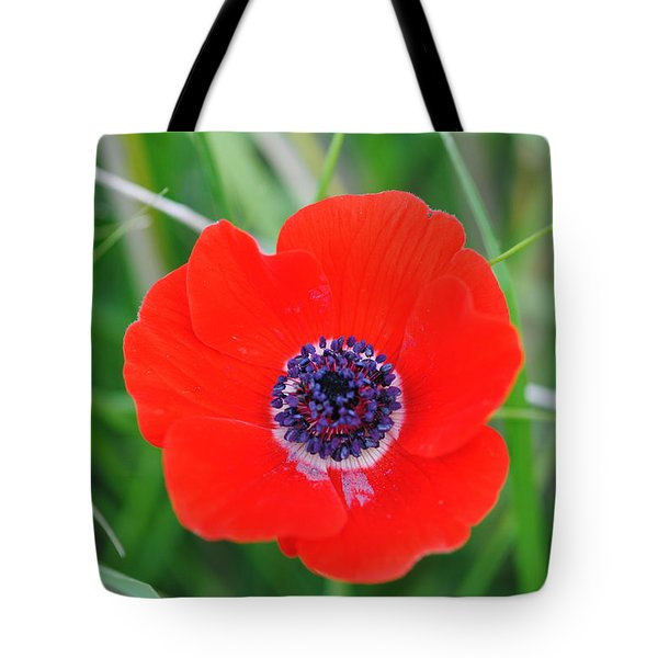 Red Anemone Coronaria 3 Tote Bag