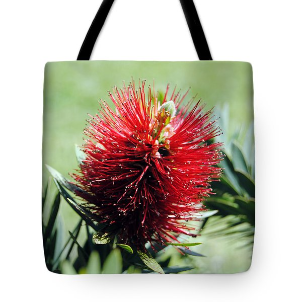 Callistemon - Bottle Brush 7 Tote Bag