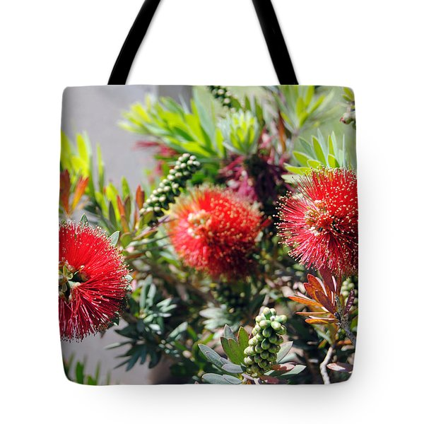 Callistemon - Bottle Brush 6 Tote Bag