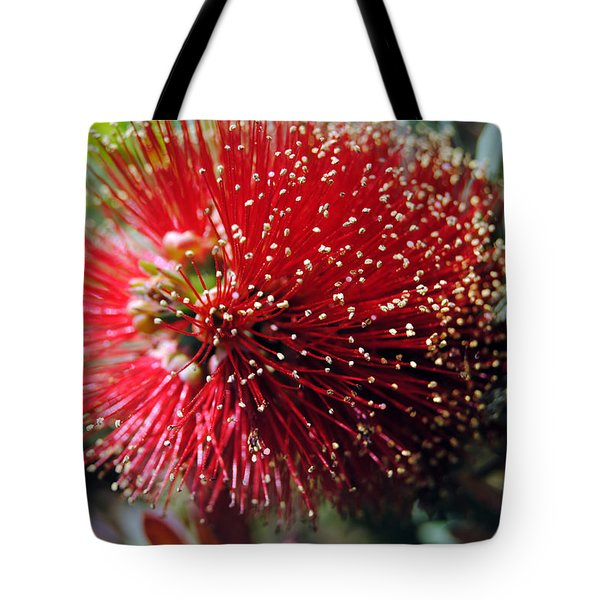 Callistemon - Bottle Brush 5 Tote Bag