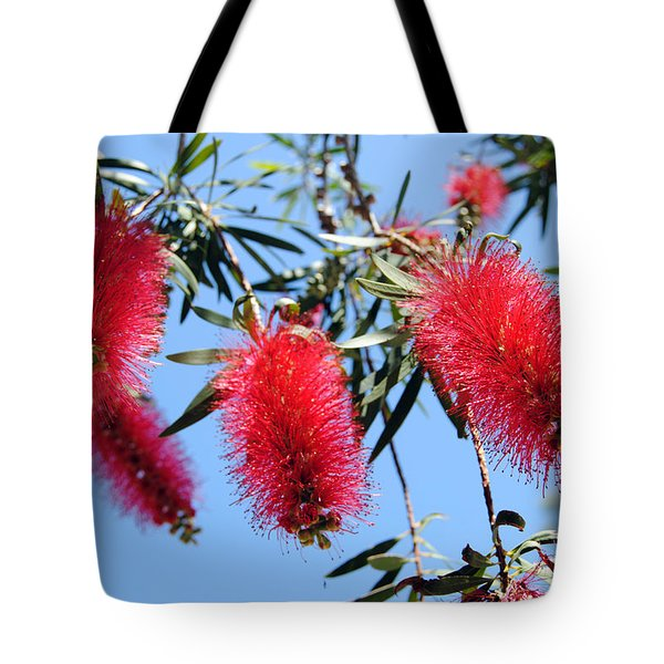Callistemon - Bottle Brush 3 Tote Bag