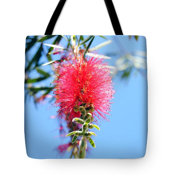 Callistemon - Bottle Brush 1 Tote Bag