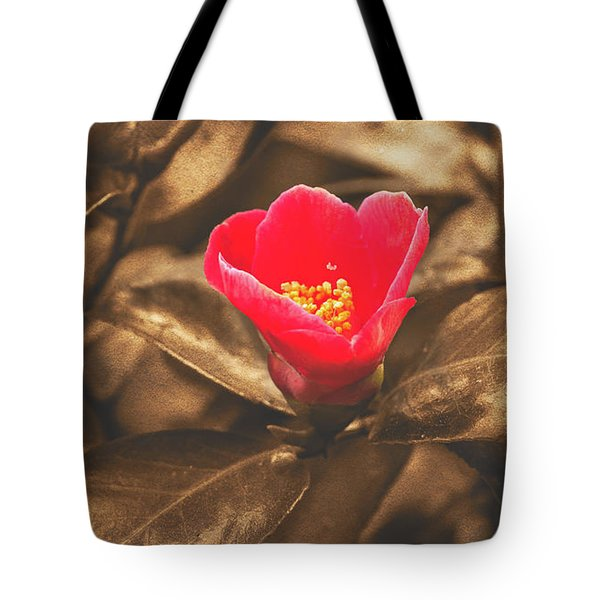 Tote Bag featuring the photograph Red Flower On Sepia Background by Jacek Wojnarowski