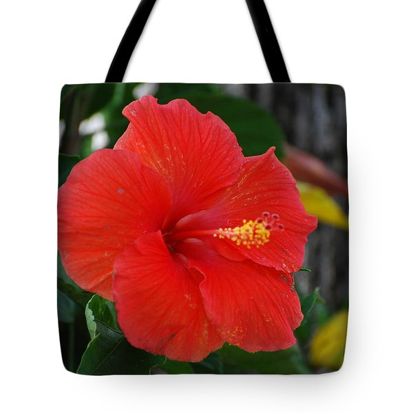 Red Flower Tote Bag by Rob Hans