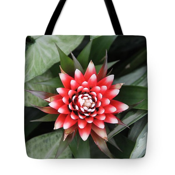 Red Flower With White Tips Tote Bag