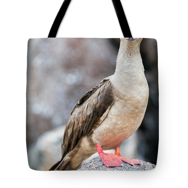 Red Footed Booby Vertical Tote Bag